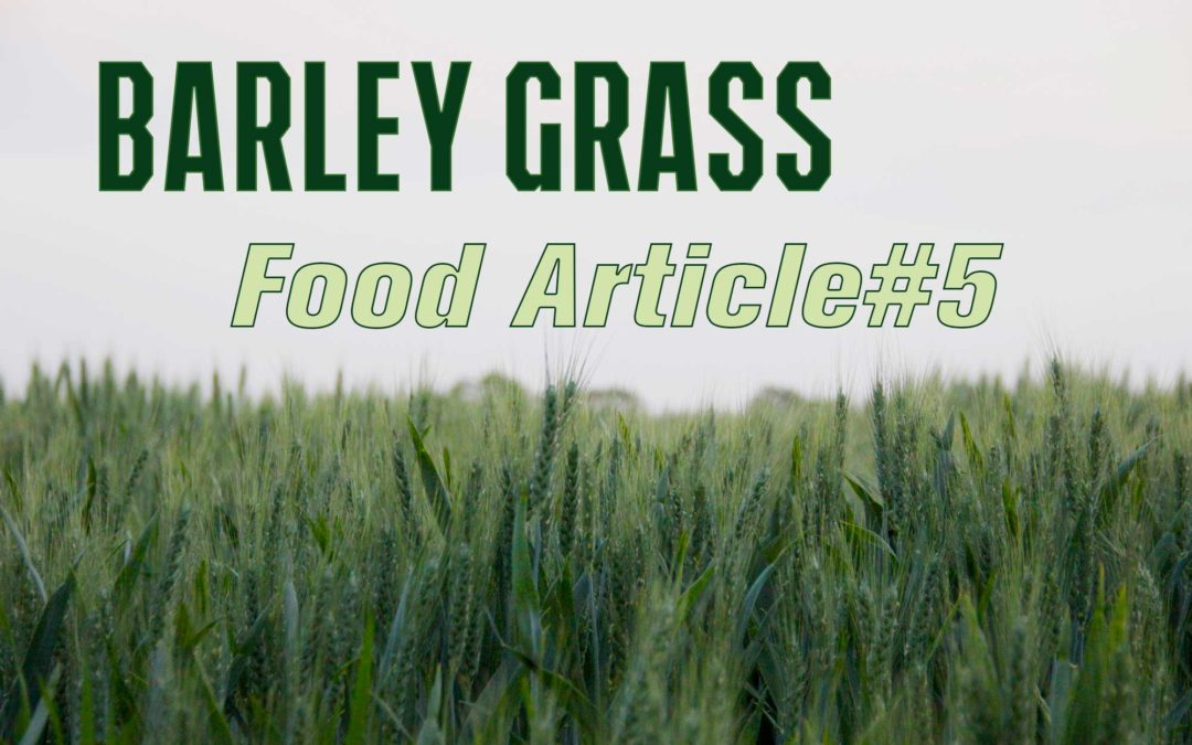Food Article#5 – BARLEY GRASS